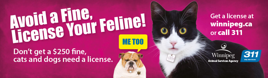 Avoid a fine, license your feline!