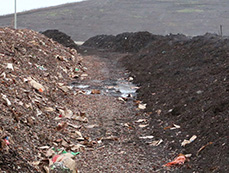 Compost at various stages at the Brady Road Resource Management Facility