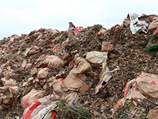 Yard waste is brought to the Brady Road Resource Management Facility