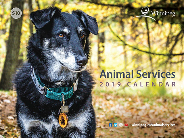 Winnipeg Animal Services has a 2019 calendar for sale for $10