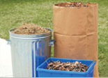 Residential yard waste report